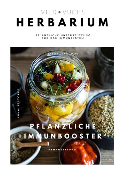 Pflanzliche Immunbooster