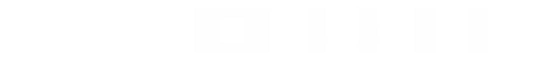 Vild-Vuchs-Logo
